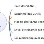 VTP Server